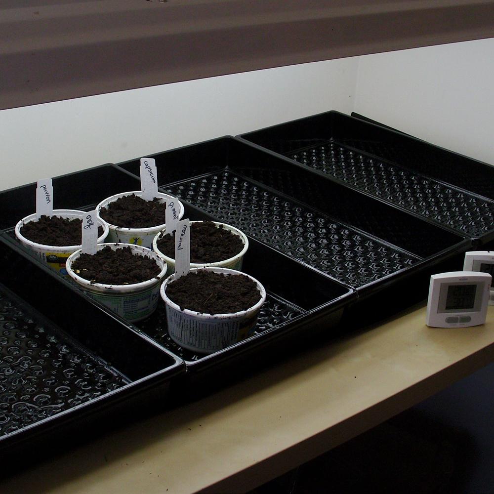 Semis et réutilisation