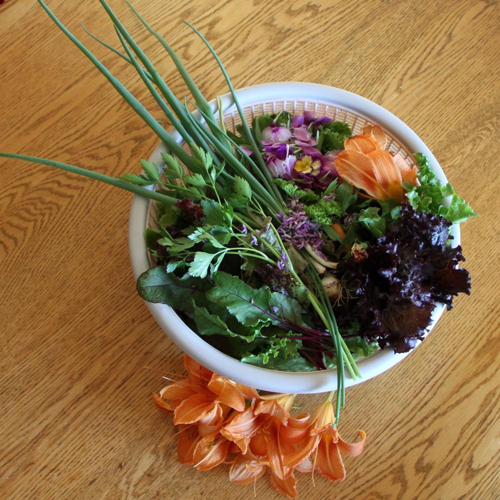 Salade du tiers de l'été